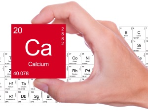 site-content-is-calcium-for-the-website